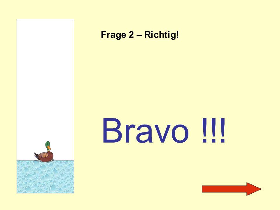 Frage 2 – Richtig! Bravo !!!