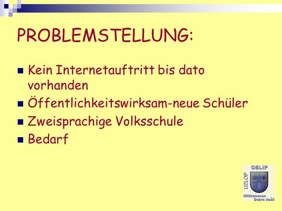 PROBLEMSTELLUNG: Kein Internetauftritt bis dato vorhanden Öffentlichkeitswirksam-neue Schüler Zweisprachige Volksschule Bedarf