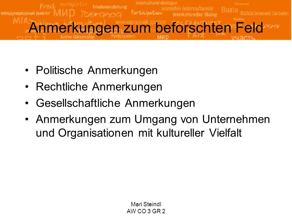 Mari Steindl AW CO 3 GR 2 Anmerkungen zum beforschten Feld Politische Anmerkungen Rechtliche Anmerkungen Gesellschaftliche Anmerkungen Anmerkungen zum