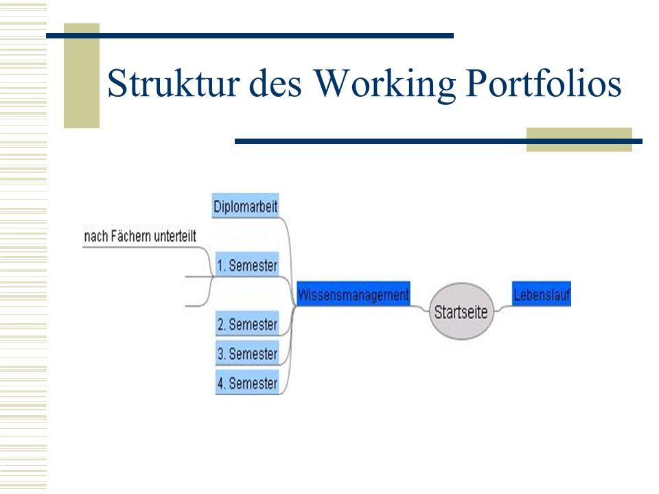 Struktur des Working Portfolios