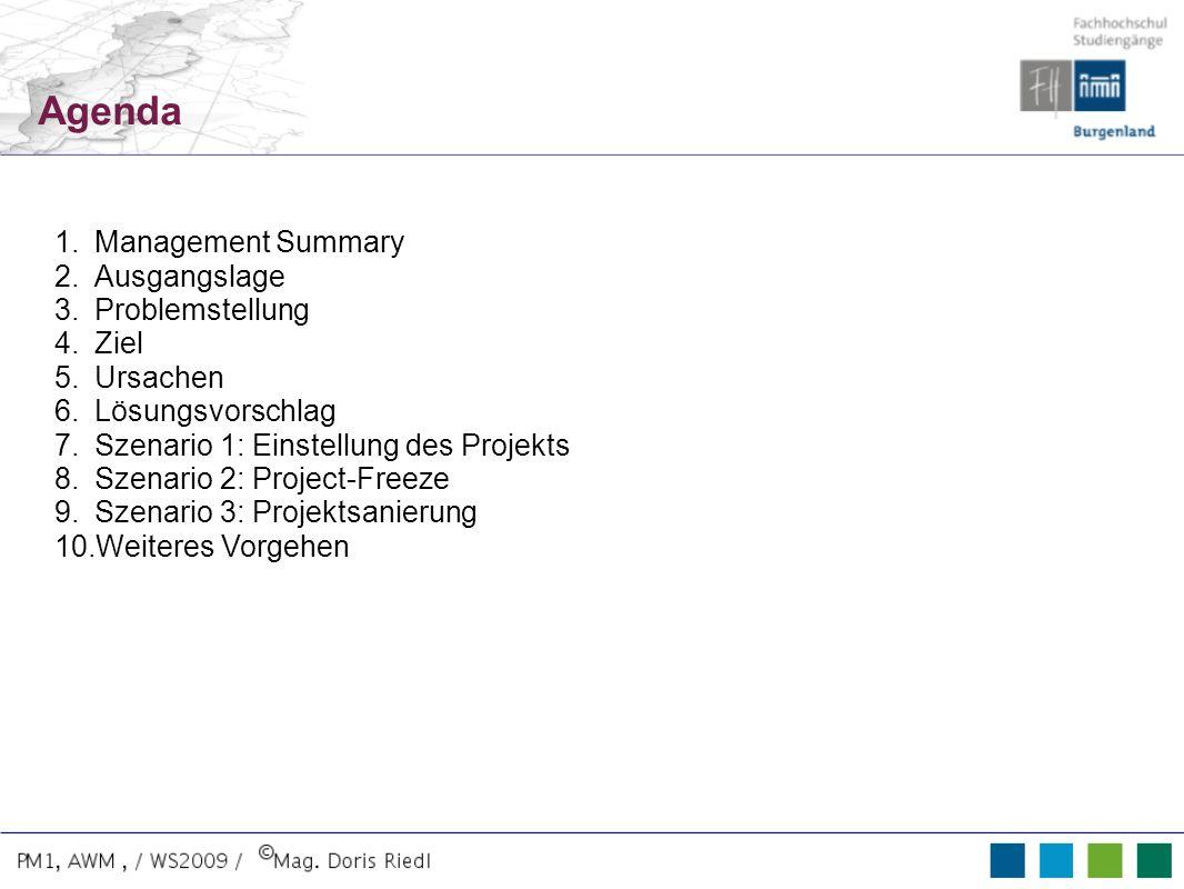Agenda 1.Management Summary 2.Ausgangslage 3.Problemstellung 4.Ziel 5.Ursachen 6.Lösungsvorschlag 7.Szenario 1: Einstellung des Projekts 8.Szenario 2: