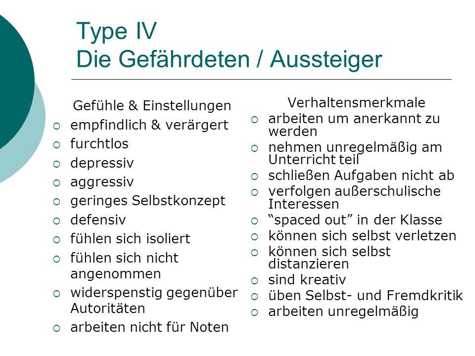 Type IV Die Gefährdeten / Aussteiger Gefühle & Einstellungen empfindlich & verärgert furchtlos depressiv aggressiv geringes Selbstkonzept defensiv füh