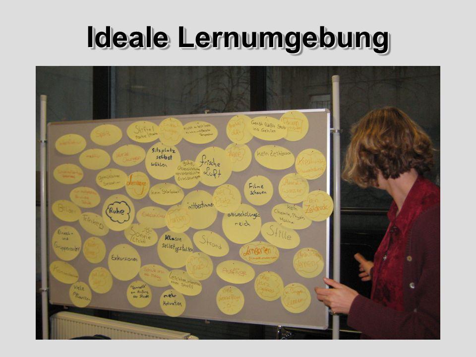 Freies Lernen in Lerngruppen, kompetente Lehrpersonen, geringere Klassenstärke, nützliche Zusammenfassungen nach erlerntem Stoff, Exkursionen, musikalische Lernunterstützung, Experten/innen, praktisches Arbeiten, Versuche, Experimente, Praxisbezug auch als Verbindung zum späteren Leben, Workshops, auf Lerntypen eingehen, Einsatz von modernen Medien im Unterricht Ideale Lernumgebung