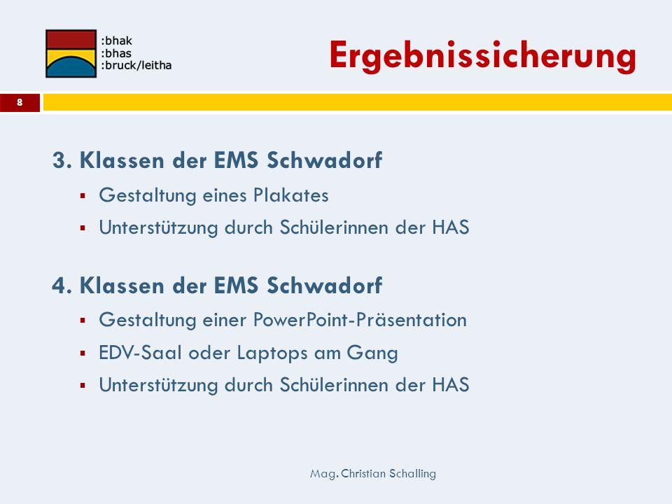 Ergebnissicherung 3. Klassen der EMS Schwadorf Gestaltung eines Plakates Unterstützung durch Schülerinnen der HAS 4. Klassen der EMS Schwadorf Gestalt