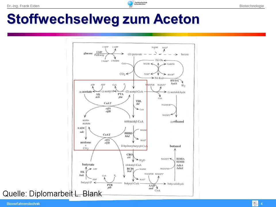Dr.-Ing. Frank Eiden Biotechnologie Bioverfahrenstechnik: 4 Stoffwechselweg zum Aceton Quelle: Diplomarbeit L. Blank