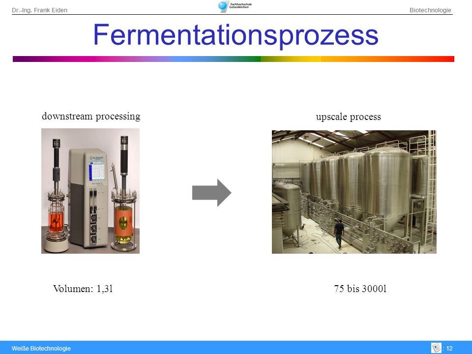 Dr.-Ing. Frank Eiden Biotechnologie Weiße Biotechnologie: 12 Fermentationsprozess downstream processing upscale process Volumen: 1,3l 75 bis 3000l