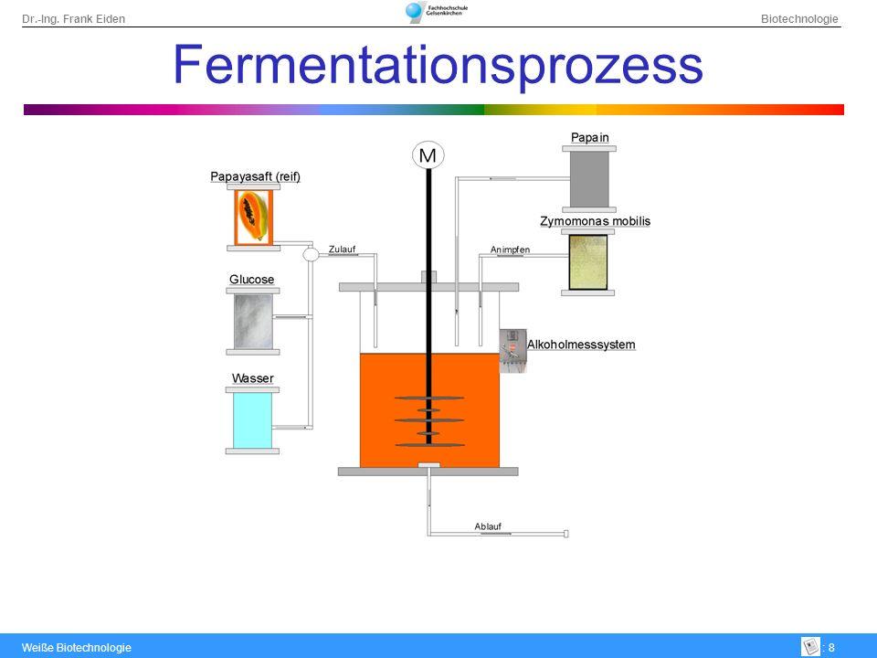Dr.-Ing. Frank Eiden Biotechnologie Weiße Biotechnologie: 8 Fermentationsprozess
