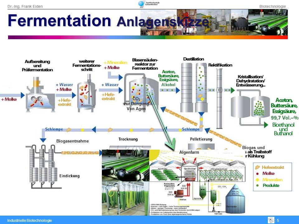 Dr.-Ing. Frank Eiden Biotechnologie Industrielle Biotechnologie: 5 Biogas und Biogasentnahme CO 2 zur Düngung Von Agen Algenfarm Fermentation Anlagens