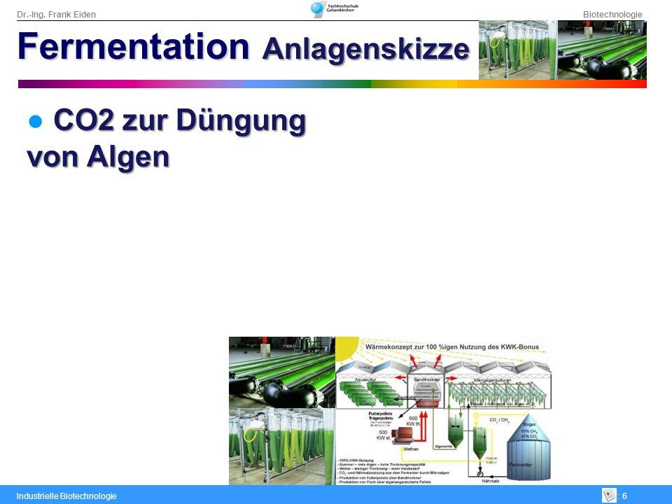 Dr.-Ing. Frank Eiden Biotechnologie Industrielle Biotechnologie: 6 CO2 zur Düngung von Algen Fermentation Anlagenskizze