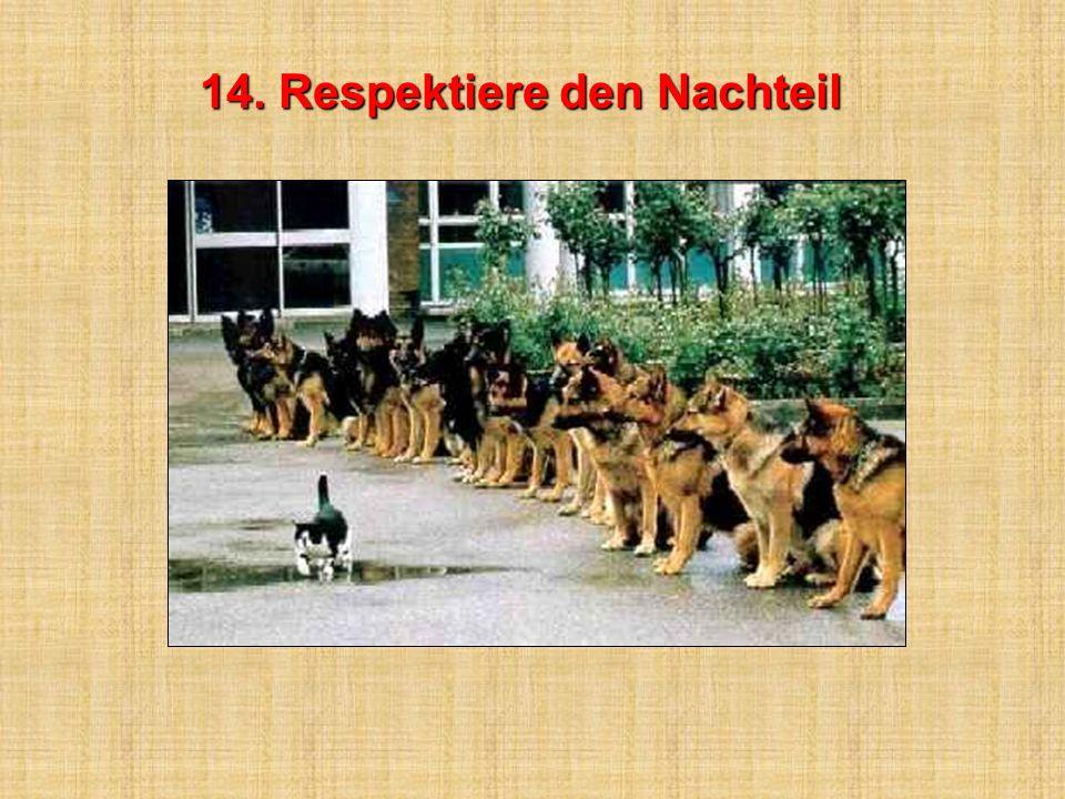 13. Habe großes Vertrauen in dich 13. Habe großes Vertrauen in dich