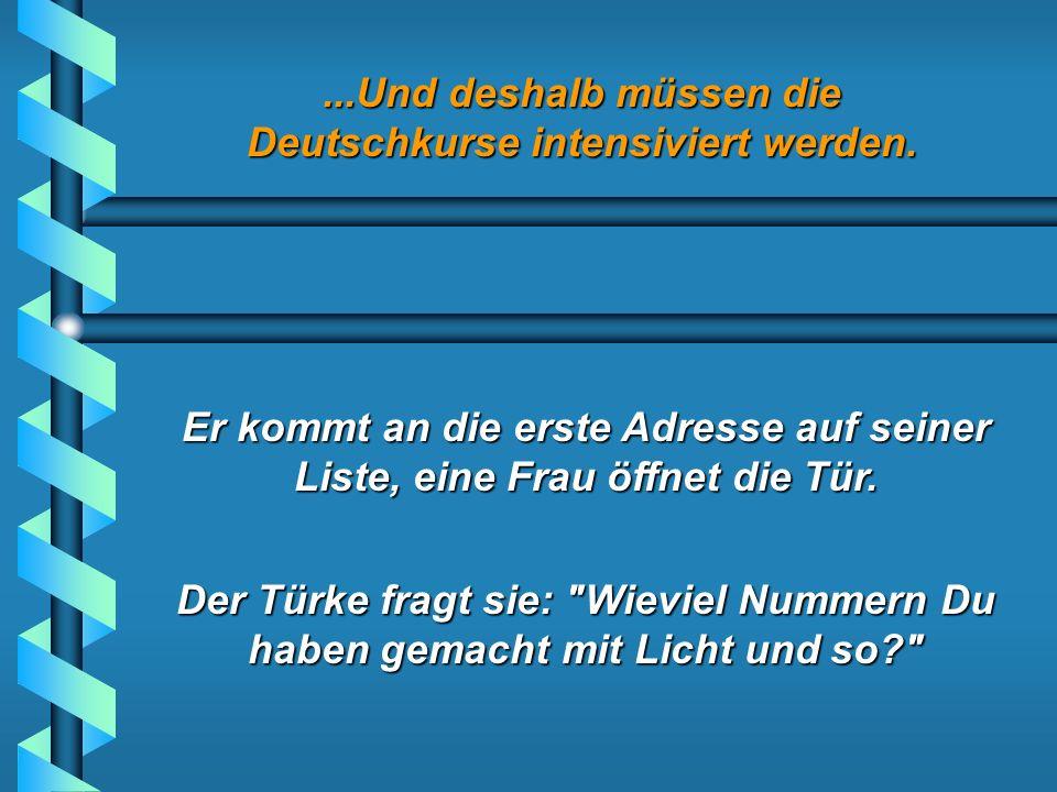 ...Und deshalb müssen die Deutschkurse intensiviert werden. Ein Türke wird von der Energie AG eingestellt, um die Zähler abzulesen.