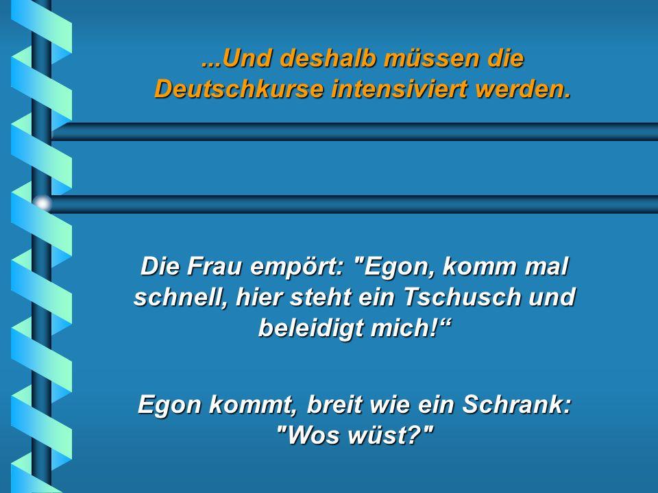 ...Und deshalb müssen die Deutschkurse intensiviert werden. Er kommt an die erste Adresse auf seiner Liste, eine Frau öffnet die Tür. Der Türke fragt