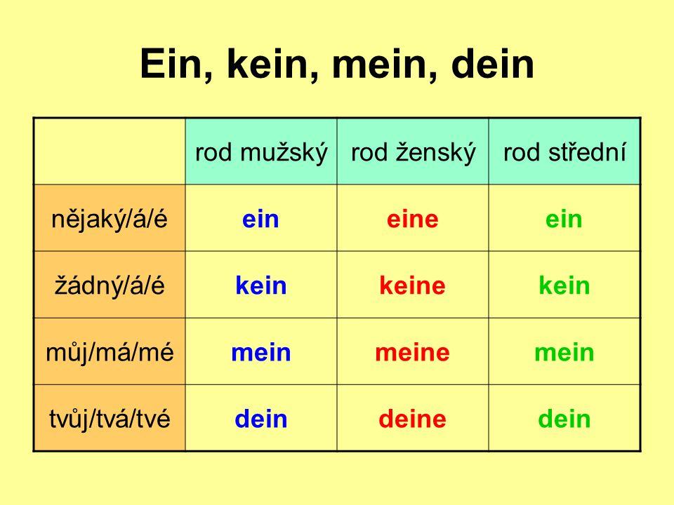 Ein, kein, mein, dein rod mužskýrod ženskýrod střední nějaký/á/éeineineein žádný/á/ékeinkeinekein můj/má/mémeinmeinemein tvůj/tvá/tvédeindeinedein