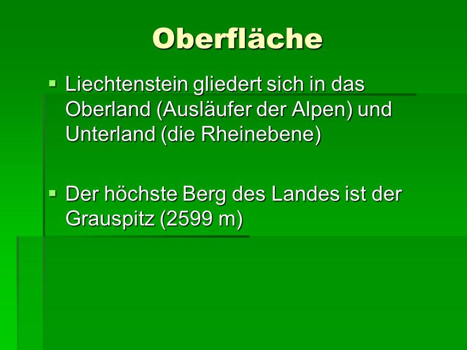 Oberfläche Liechtenstein gliedert sich in das Oberland (Ausläufer der Alpen) und Unterland (die Rheinebene) Liechtenstein gliedert sich in das Oberlan