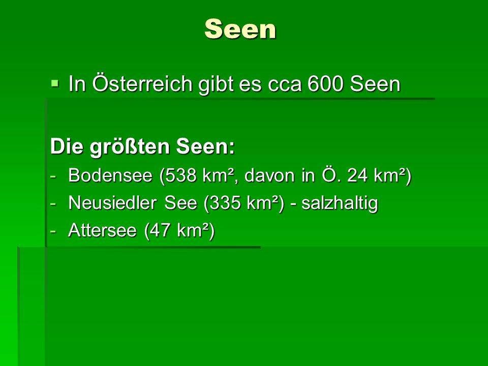Seen In Österreich gibt es cca 600 Seen In Österreich gibt es cca 600 Seen Die größten Seen: -Bodensee (538 km², davon in Ö. 24 km²) -Neusiedler See (
