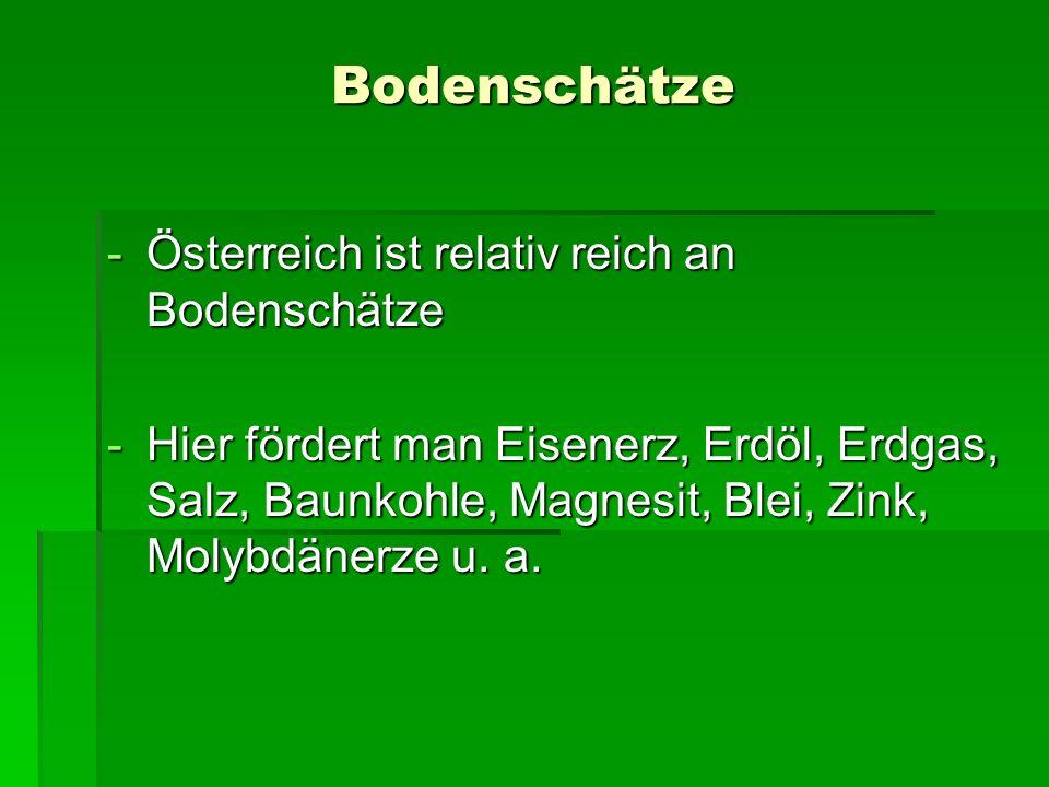 Bodenschätze -Österreich ist relativ reich an Bodenschätze -Hier fördert man Eisenerz, Erdöl, Erdgas, Salz, Baunkohle, Magnesit, Blei, Zink, Molybdäne