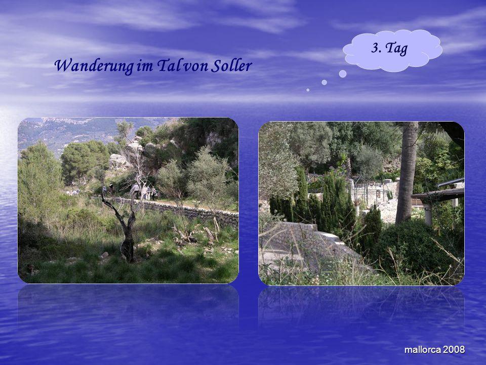 mallorca 2008 Wanderung im Tal von Soller 3. Tag