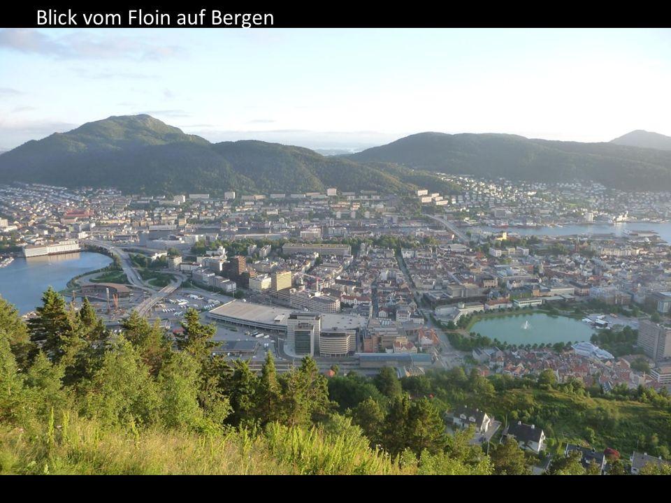 Blick vom Floin auf Bergen