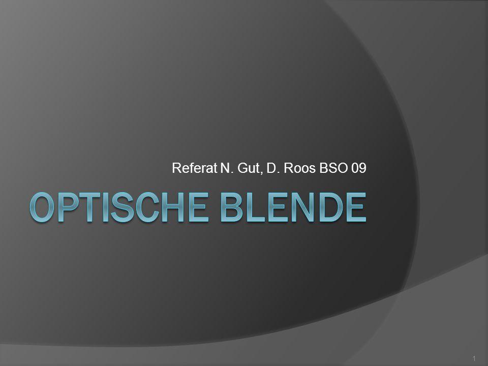 Referat N. Gut, D. Roos BSO 09 1