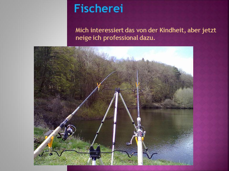 Fischerei Mich interessiert das von der Kindheit, aber jetzt neige ich professional dazu.