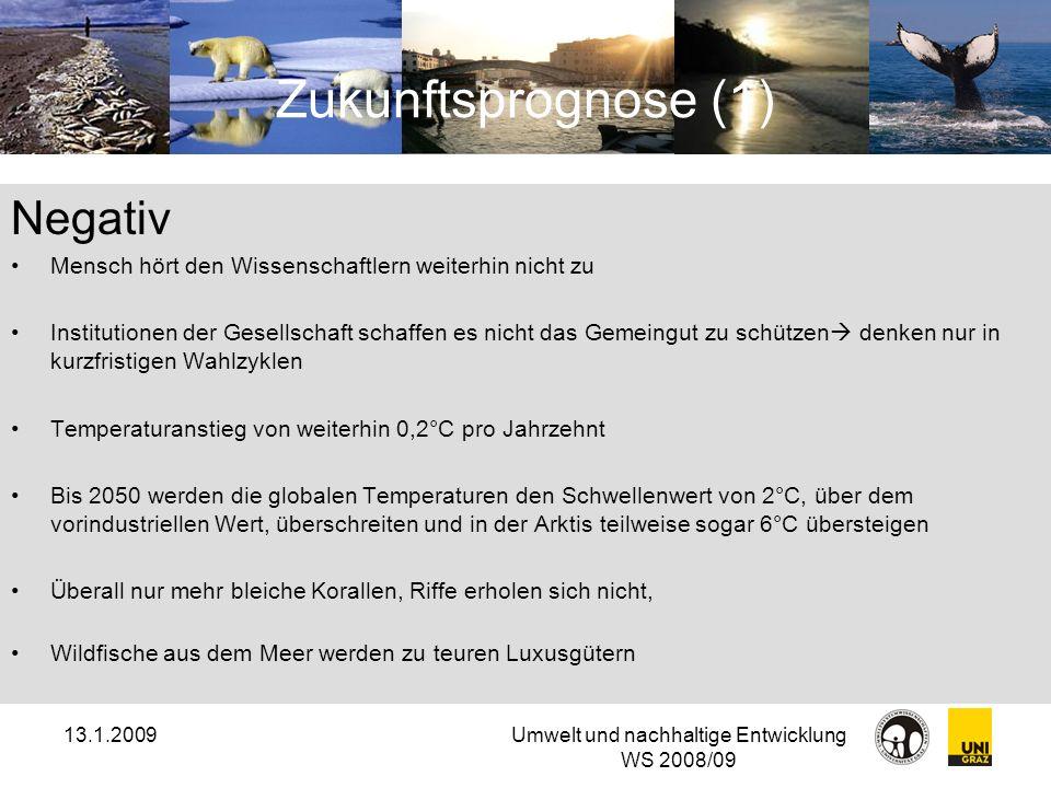 13.1.2009Umwelt und nachhaltige Entwicklung WS 2008/09 Zukunftsprognose (1) Negativ Mensch hört den Wissenschaftlern weiterhin nicht zu Institutionen