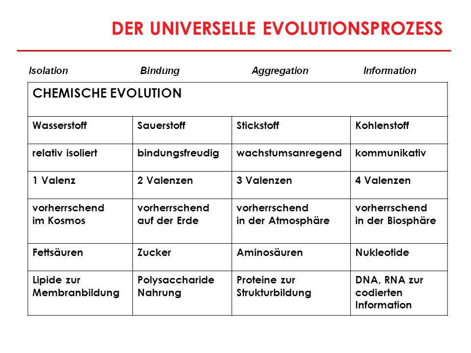 DER UNIVERSELLE EVOLUTIONSPROZESS CHEMISCHE EVOLUTION WasserstoffSauerstoffStickstoffKohlenstoff relativ isoliertbindungsfreudigwachstumsanregendkommu