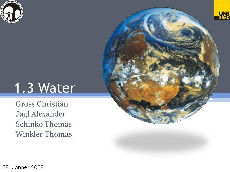 1.3 Water Gross Christian Jagl Alexander Schinko Thomas Winkler Thomas 08. Jänner 2008