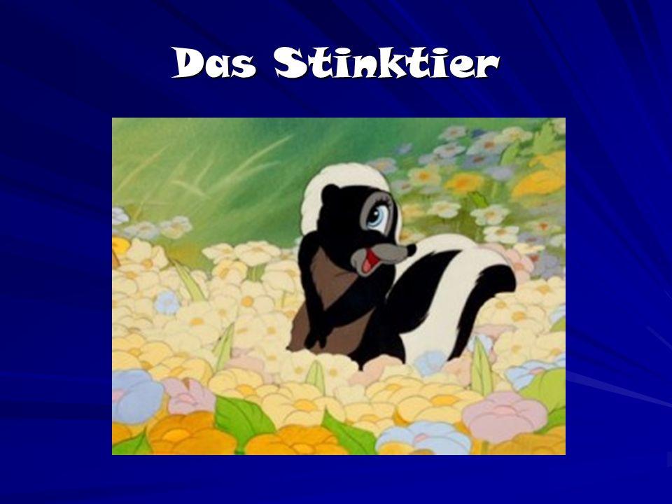 Das Stinktier