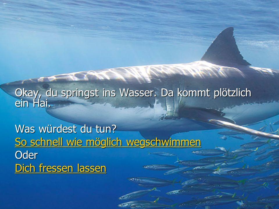 Okay, du springst ins Wasser.Da kommt plötzlich ein Hai.