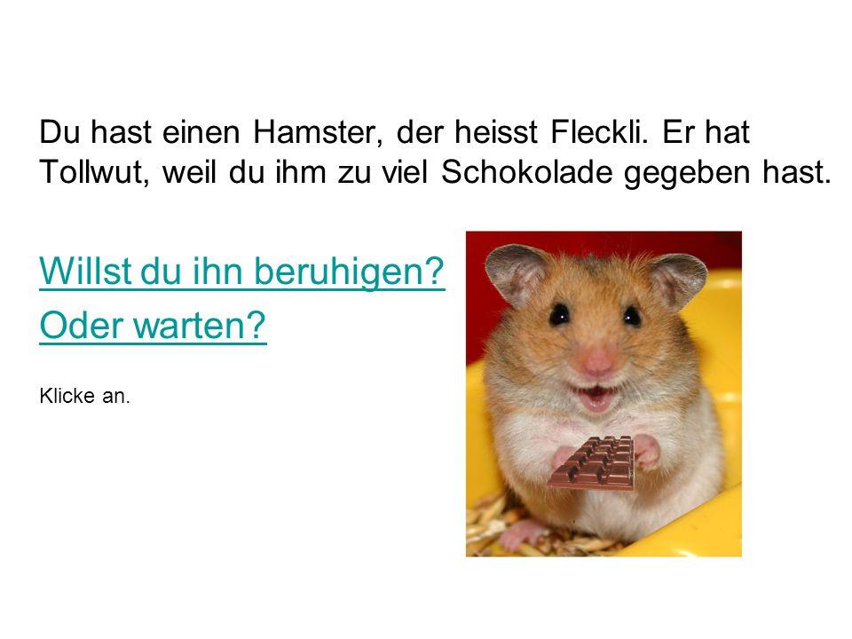 Du hast einen Hamster, der heisst Fleckli.