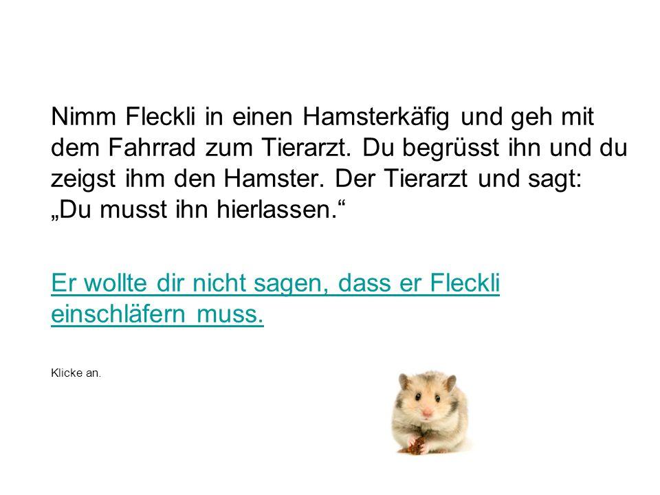 Nimm Fleckli in einen Hamsterkäfig und geh mit dem Fahrrad zum Tierarzt.