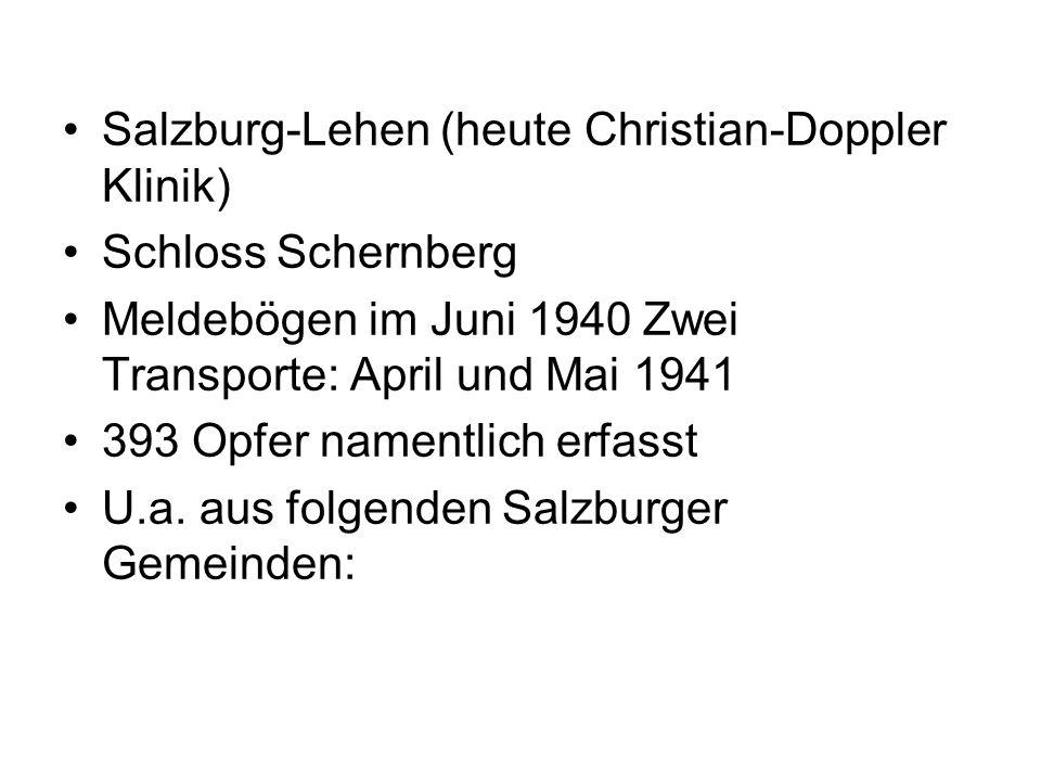 Salzburg-Lehen (heute Christian-Doppler Klinik) Schloss Schernberg Meldebögen im Juni 1940 Zwei Transporte: April und Mai 1941 393 Opfer namentlich er