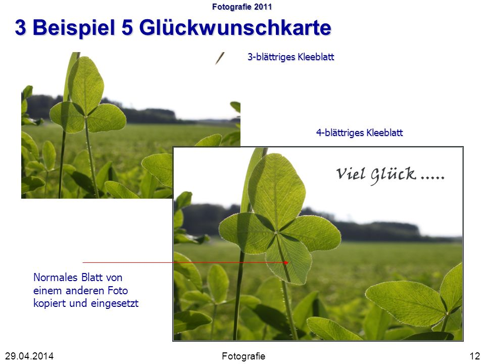 Fotografie 2011 3 Beispiel 5 Glückwunschkarte Fotografie1229.04.2014 3-blättriges Kleeblatt 4-blättriges Kleeblatt Normales Blatt von einem anderen Foto kopiert und eingesetzt