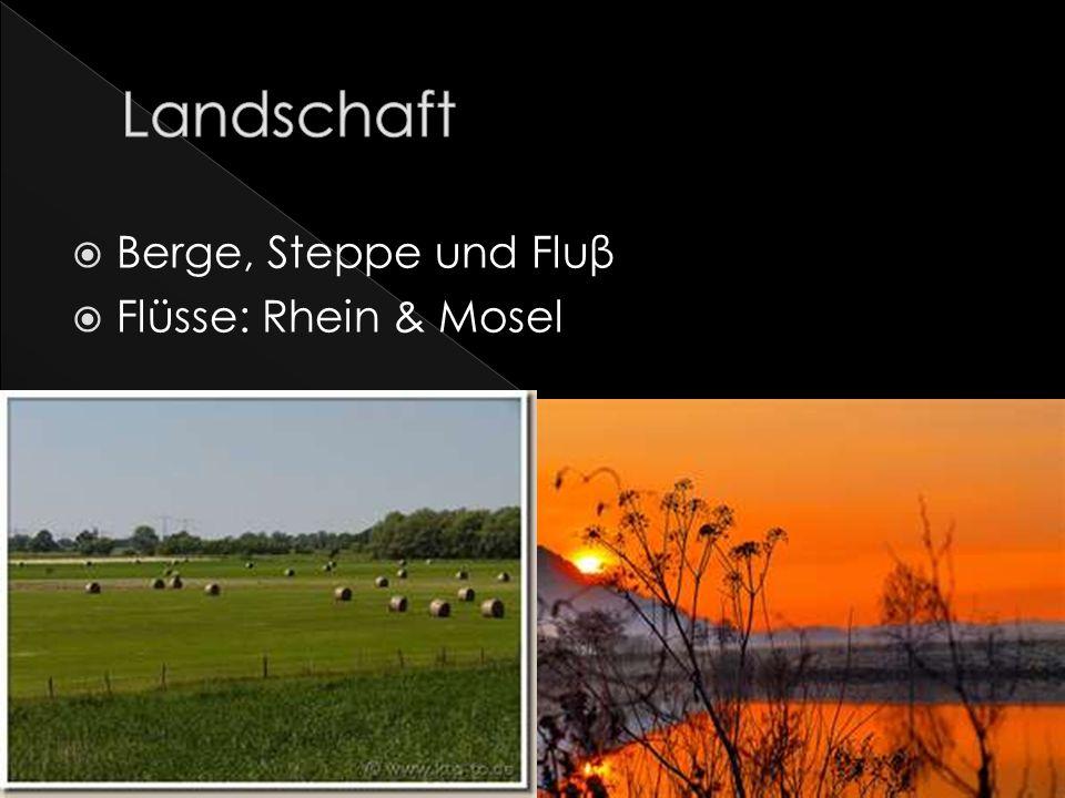 Berge, Steppe und Fluβ Flüsse: Rhein & Mosel