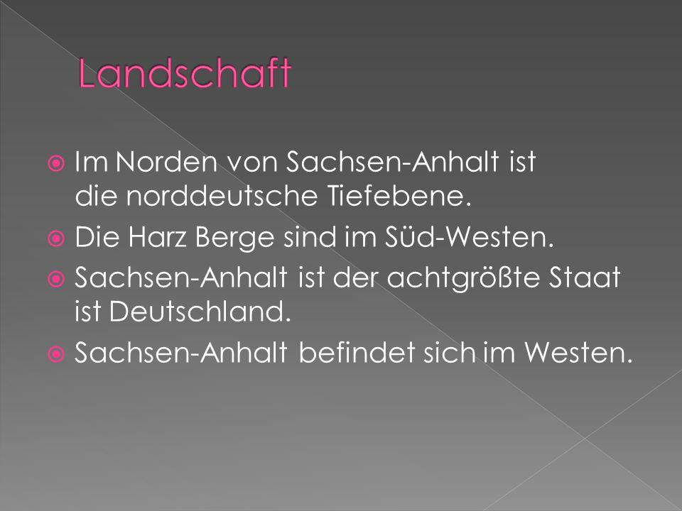 Im Norden von Sachsen-Anhalt ist die norddeutsche Tiefebene. Die Harz Berge sind im Süd-Westen. Sachsen-Anhalt ist der achtgrößte Staat ist Deutschlan