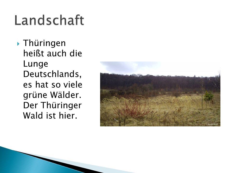 Thüringen heißt auch die Lunge Deutschlands, es hat so viele grüne Wälder. Der Thüringer Wald ist hier.