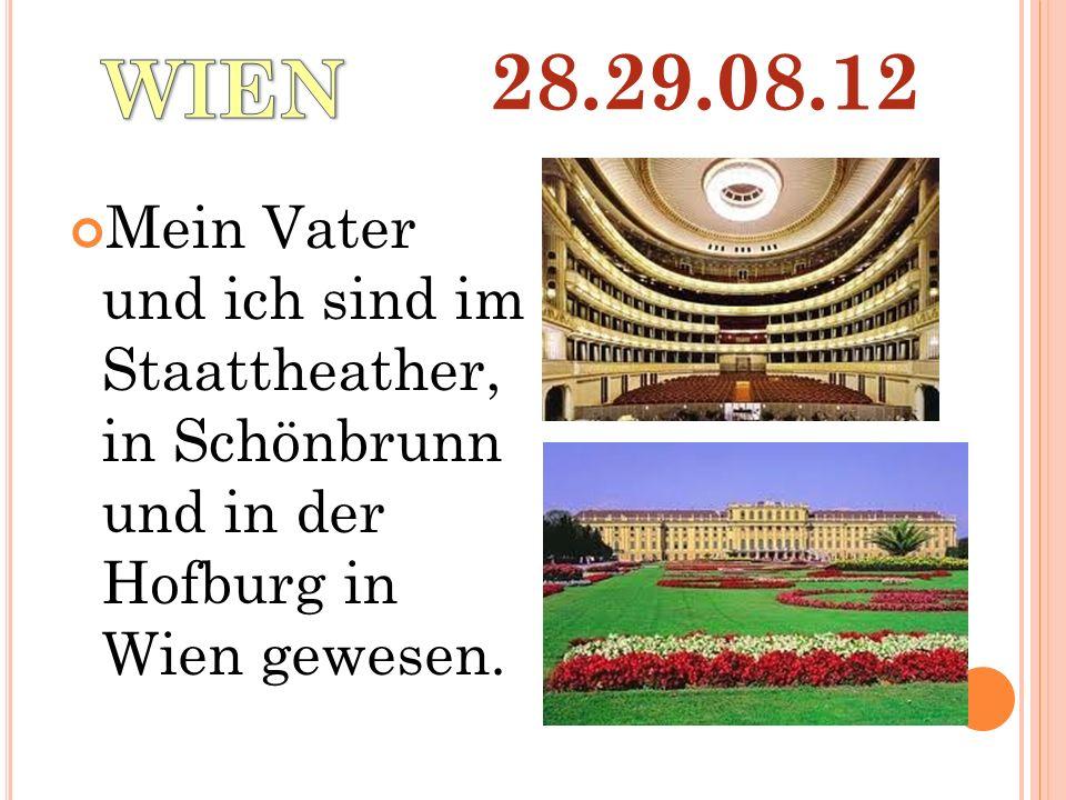 Mein Vater und ich sind im Staattheather, in Schönbrunn und in der Hofburg in Wien gewesen.