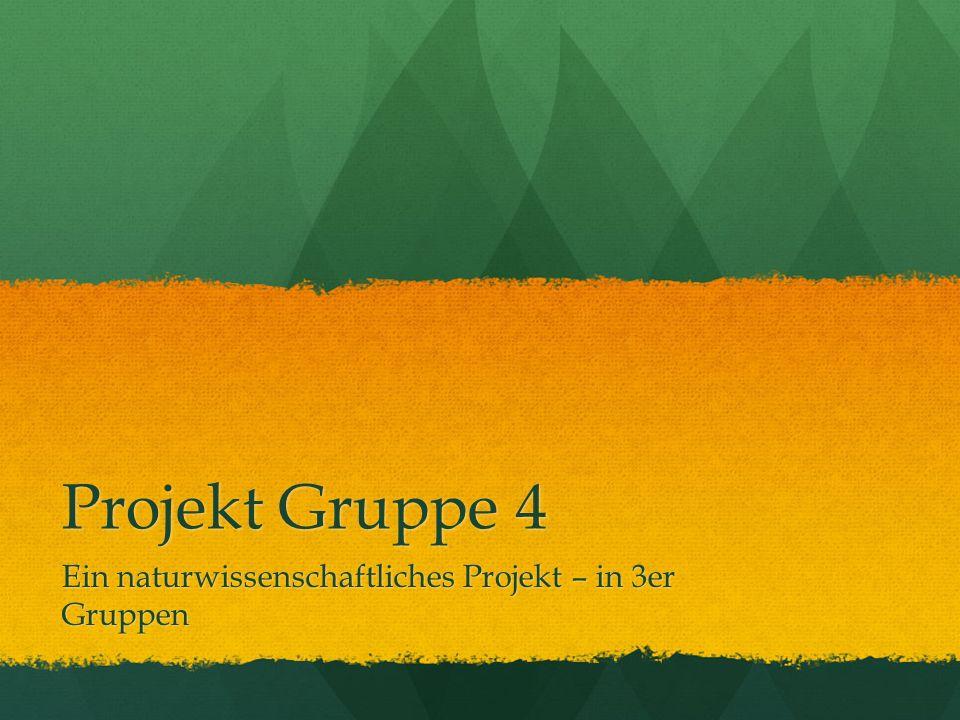 Projekt Gruppe 4 Ein naturwissenschaftliches Projekt – in 3er Gruppen