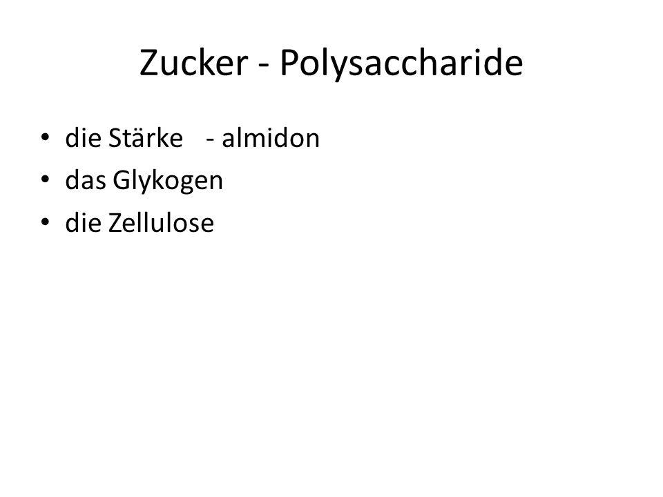 Zucker - Polysaccharide die Stärke- almidon das Glykogen die Zellulose