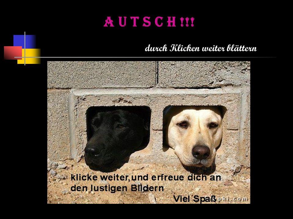AUTSCH!!!(23) KURTS Bilder aus dem Internet Datum und Uhrzeit aktuell 29.04.2014 23:28 Gemacht von K.M 2013