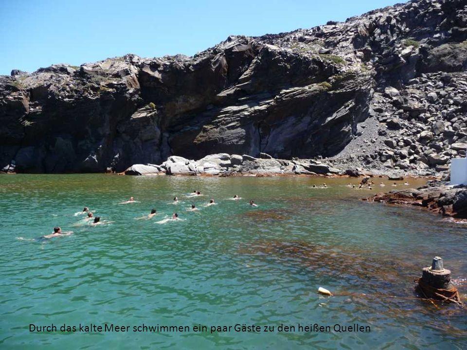 Durch das kalte Meer schwimmen ein paar Gäste zu den heißen Quellen