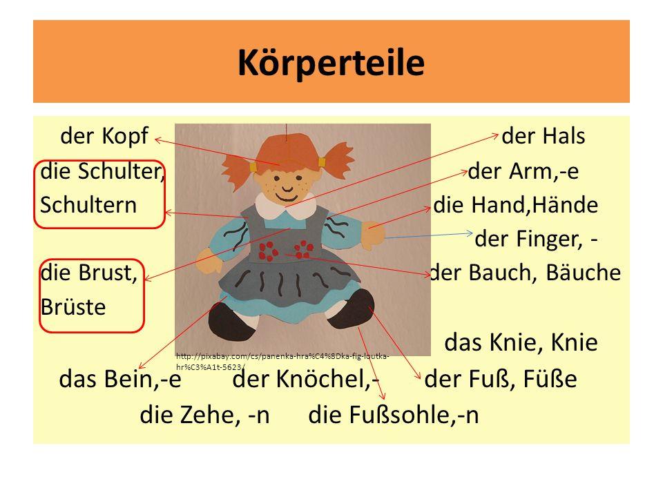 Körperteile der Kopf der Hals die Schulter, der Arm,-e Schultern die Hand,Hände der Finger, - die Brust, der Bauch, Bäuche Brüste das Knie, Knie das Bein,-e der Knöchel,- der Fuß, Füße die Zehe, -n die Fußsohle,-n http://pixabay.com/cs/panenka-hra%C4%8Dka-fig-loutka- hr%C3%A1t-5623/