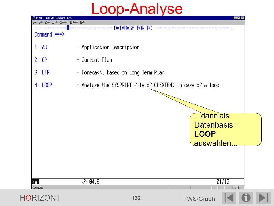 Loop-Analyse...dann als Datenbasis LOOP auswählen... HORIZONT 132 TWS/Graph