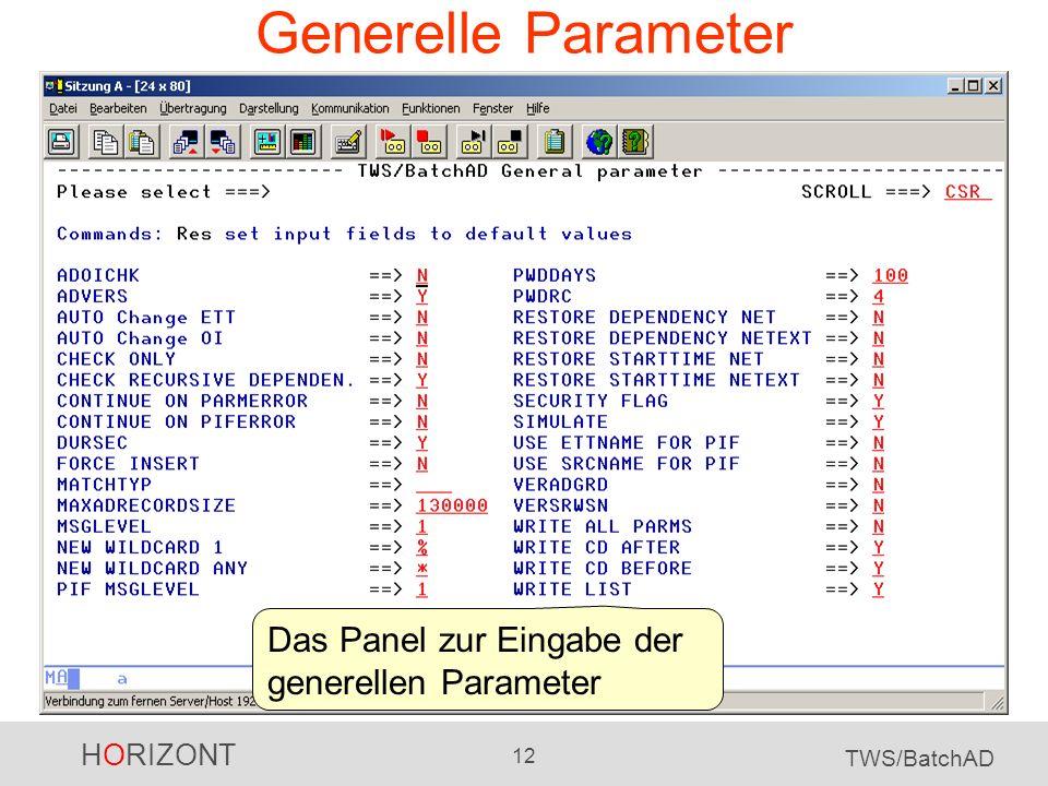 HORIZONT 12 TWS/BatchAD Generelle Parameter Das Panel zur Eingabe der generellen Parameter