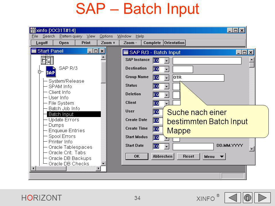 HORIZONT 34 XINFO ® SAP – Batch Input Suche nach einer bestimmten Batch Input Mappe