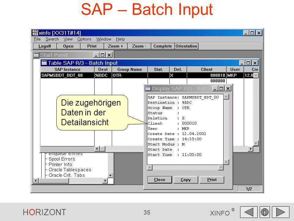 HORIZONT 35 XINFO ® SAP – Batch Input Die zugehörigen Daten in der Detailansicht