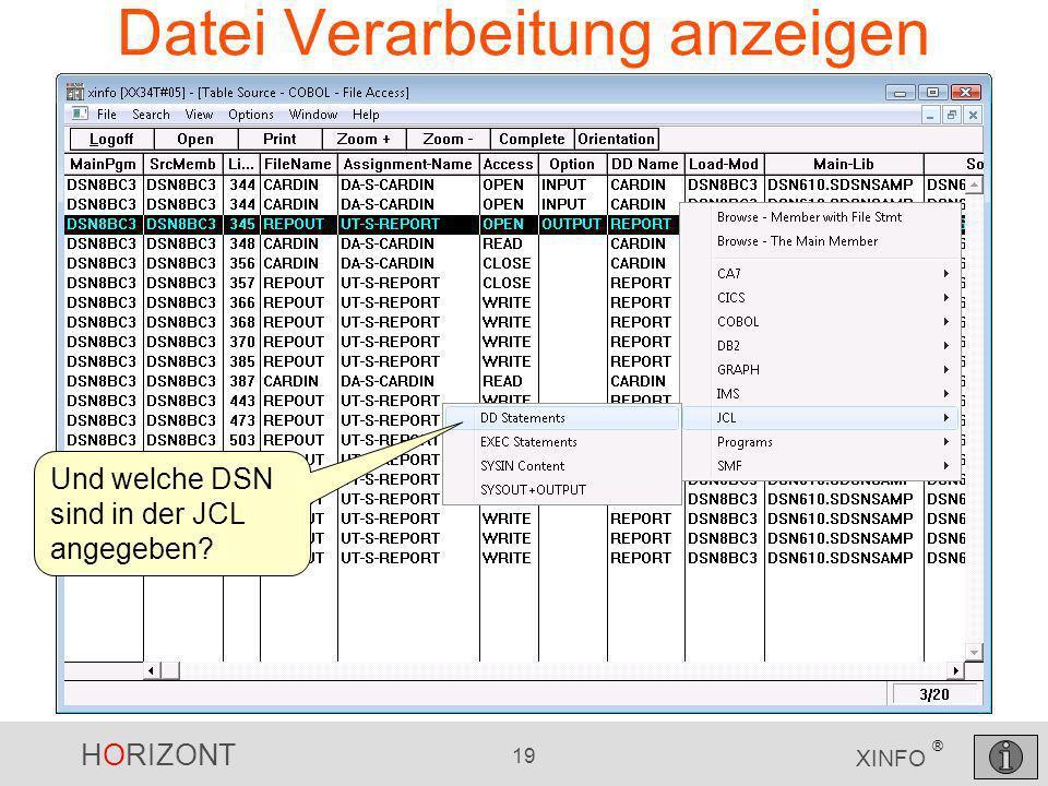 HORIZONT 19 XINFO ® Datei Verarbeitung anzeigen Und welche DSN sind in der JCL angegeben?