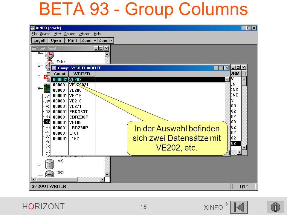 HORIZONT 16 XINFO ® BETA 93 - Group Columns In der Auswahl befinden sich zwei Datensätze mit VE202, etc.
