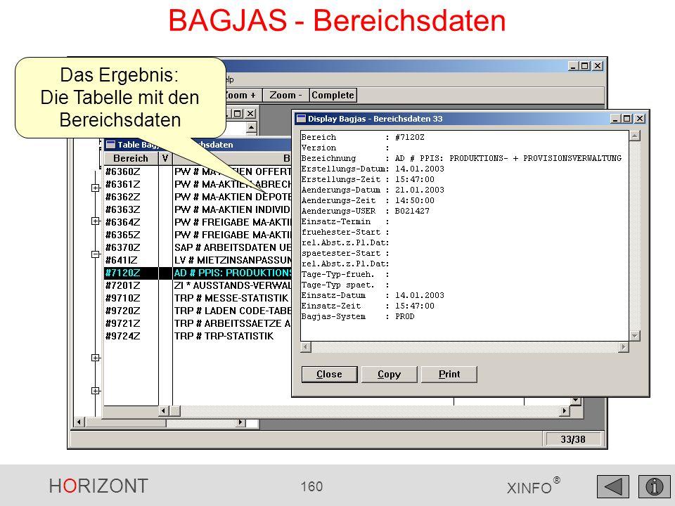 HORIZONT 160 XINFO ® BAGJAS - Bereichsdaten Das Ergebnis: Die Tabelle mit den Bereichsdaten