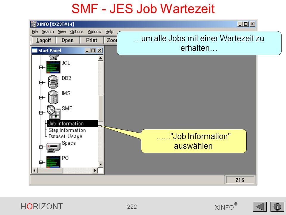 HORIZONT 222 XINFO ® SMF - JES Job Wartezeit......